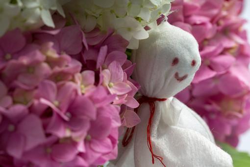 てるてる坊主 てるてるぼうず 雨 あめ 梅雨 つゆ 雪 ゆき 6月 天気 天候 晴れ 季節 雨季 人形 ティッシュ ちり紙 ちりがみ 長靴  願い 願う 祈念 祈り 祈る 遠足 運動会 行事 旅行 お出かけ 外出 日本 風習 伝統 手作り かお 顔 白い アジサイ あじさい 紫陽花