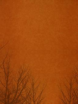 葉 木 枯木 樹木 シルエット 素材  植物 自然 オレンジ 茶色 パターン  ナチュラル  空間 テクスチャ 質感 背景 背景素材 バックグラウンド テキストスペース コピースペース  秋 冬 余白 フレーム 枝 シンプル 加工 写真加工
