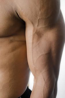 筋肉 マッスル ボディビルダー ボディ 体 人間 人体 男性 男 漢 強い 屈強 頑丈 スポーツ 筋力 筋トレ ボクシング ボクサー トレーニング スポーツジム アスリート ストイック ビルドアップ 憧れ ダイエット ムキムキ 腕 二の腕 上腕筋 血管