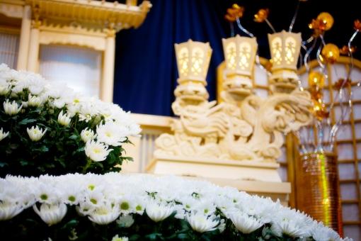 葬儀 葬儀場 告別式 通夜 お別れ 別れ 花 植物 菊 白菊 緑 グリーン 祭壇 冥福 祈る 悲しみ コピースペース 咲く 木造 金 金飾り 竜 ドラゴン 灯明 明り 死 葬儀イメージ