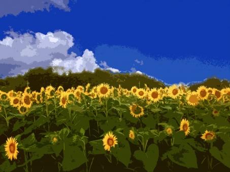 ひまわり畑 ヒマワリ畑 向日葵畑 ひまわり 向日葵 ヒマワリ 花 黄色い花 夏の花 花弁 花びら 植物 夏の植物 季節感 seasonimage シーズンイメージ 自然 緑 夏 夏の風物詩 夏の風景 夏景色 農業 農地 農作物 農産物 sunflower イラスト調 絵画調