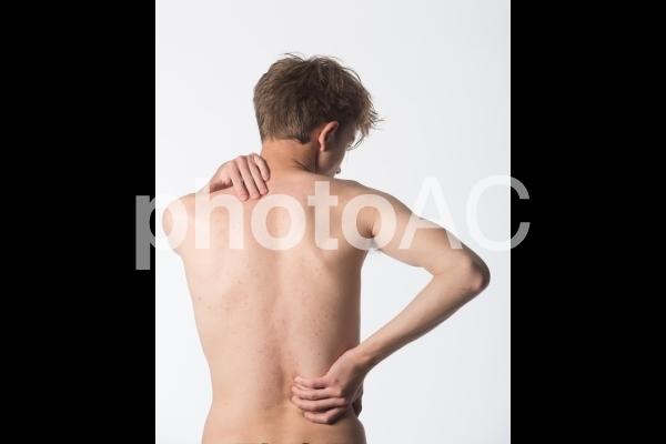 男性の背中の写真