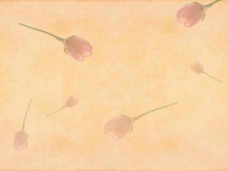 花 桜 サクラ さくら 花びら 植物 自然 春 空間 余白 テクスチャ 質感 背景 背景素材 バックグラウンド テキストスペース コピースペース 枠 フレーム 暖かい ナチュラル 桜の花 桜柄 ベージュ 舞う 散る 散らばる 散布 蕾 つぼみ 加工 写真加工