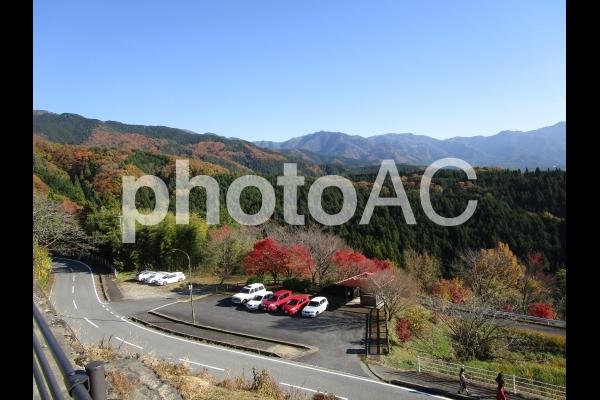 展望台からの眺め ~紅葉~の写真