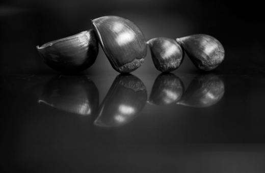 植物 クリ 栗 静物 果実 木の実 モノクロ 白黒 反射 フィルム 横位置 余白 作品 ものがたり 絵本 読み聞かせ 秋 夜 テーブルフォト