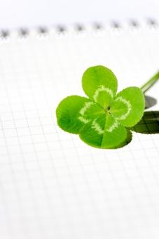 クローバー 植物 草 四葉のクローバー 四葉 ラッキーアイテム 幸運 ラッキー 幸せ 緑 ノート 文具 四つ葉 四ツ葉 お守り