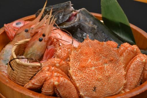 イメージ 刺身 海鮮 メニュー 新鮮 魚介 鮮魚 えび 盛り 盛り合わせ 居酒屋 エビ 前菜 海 料理 海鮮料理 旬 グルメ 日本料理 海鮮料理 海の幸 魚貝 サカナ 魚 肴 フィッシュ fish 蟹 かに 海老