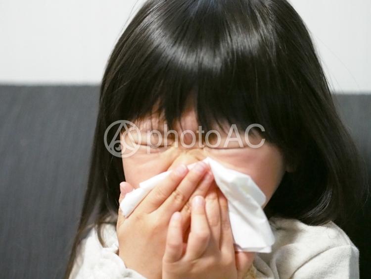 鼻をかむ女の子1の写真