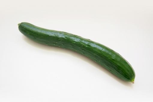 キュウリ 胡瓜 きゅうり 野菜 食物 フード 食品 食料 果物 緑 緑色 ベジタブル 黄瓜 サラダ 低カロリー 健康 ウリ科 植物 食材 果菜 青果 かご カゴ 籠 バスケット