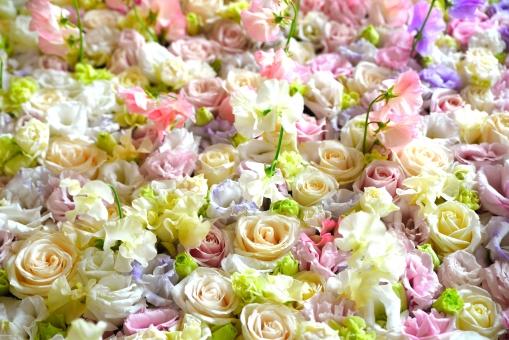 薔薇 ばら テクスチャー 紫 緑 グリーン 薔薇 花 ティーポット 紅茶 カップ 白 グリーン 緑 薔薇 花 ティーポット 紅茶 カップ 白 グリーン 緑 テーブルコーディネート,テーブルウエア,グラス,食器,シャンパングラス,アルコール,テーブル,食卓,ダイニング,レストラン,テーブルマナー,もてなし,おもてなし,テーブルセッティング,皿,ナプキン,空間,インテリア,記念日,パーティー,卓上,ガラス,カトラリー,装飾,豪華