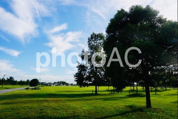 広々とした公園の写真