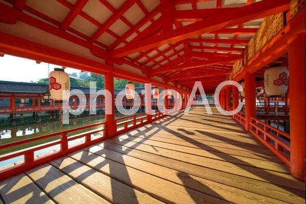厳島神社の風景の写真