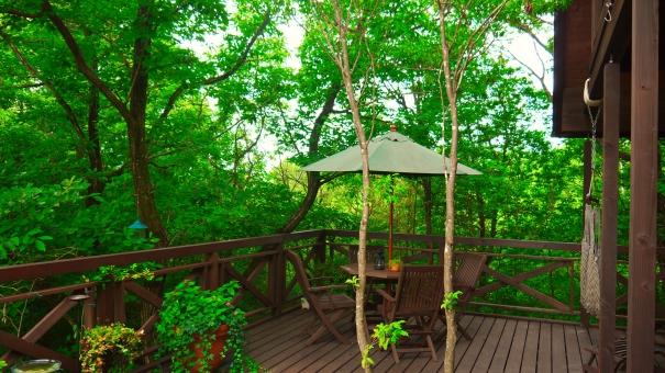 ウッドデッキ バーベキュー bbq ログハウス みどり ミドリ 緑 green 森 woods 涼しい 鮮やか 避暑地 さわやか 爽やか バルコニー ベランダ 夏 万緑