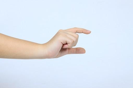 手 ハンド ハンドパーツ ボディパーツ 人物 指 手元 手首 ジェスチャー 身振り 肌 人肌 腕 パーツ 部位 片手 片腕 白バック 白背景 コピースペース テキストスペース 右手 持つ つまむ 摘む 掴む 示す 大きさ