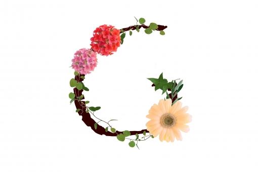 アルファベット ローマ字 英文字 文字 植物 花 ガーベラ カランコエ グリーン テクスチャ 素材