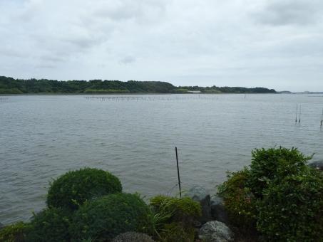 浜名湖 浜名湖漁場 漁場 浜名湖沿岸 浜名湖畔