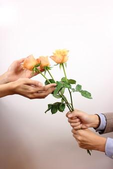 花 植物 薔薇 ばら バラ 綺麗 美しい 切花 切り花 花びら 花束 フラワーアレンジメント プレゼント ギフト 男性 手 持つ 渡す 後ろ 女性 受け取る サプライズ プロポーズ 告白 愛 ホワイトデー クリスマス 誕生日 記念日 恋人