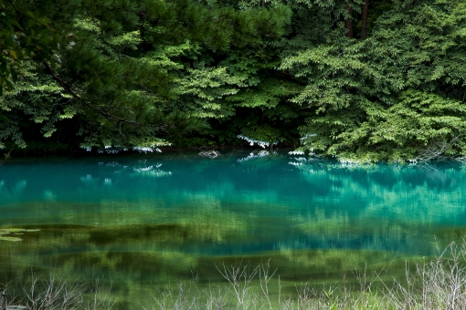 五色沼 瑠璃沼 裏磐梯 磐梯山 福島県 会津 トレッキング 神秘 幻想的 池 沼 自然 風景 景勝地 青色 瑠璃色 緑 グリーン 湖 日本