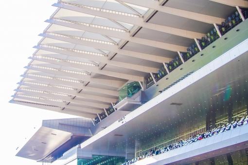 応援 スタンド 応援席 競馬場 屋根 アーケード 中京 観客席 建物 ベンチ 観戦 レース 競馬 馬券 眺め