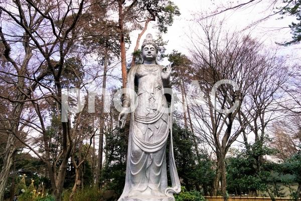 聖観世音菩薩の写真