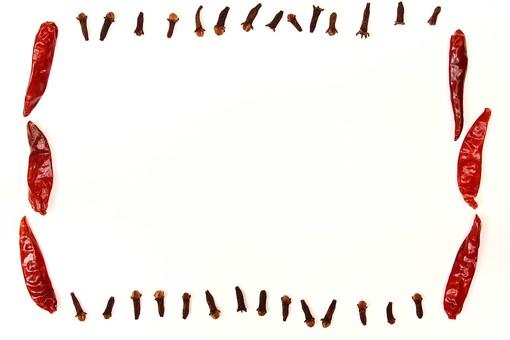 スパイス ハーブ グローブ レッドチリ 赤唐辛子 とうがらし トウガラシ 唐辛子 ホットスパイス 調味料 香辛料 香料 食べ物 食材 乾燥 フレーム 余白 コピースペース テキストスペース 背景 背景素材 バックグラウンド 白 白背景 白バック 囲み枠 枠 並べる 複数 赤 シンプル 自然 植物 実