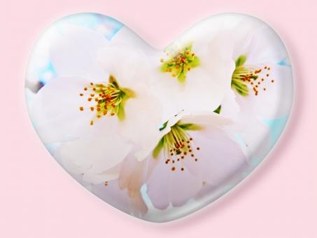 ハート はーと heart 素材 背景 アイコン ラブ love 愛 ロマンチック バレンタイン フレーム クリスタル風 枠 はな 花 華 さくら サクラ 桜 ピンク