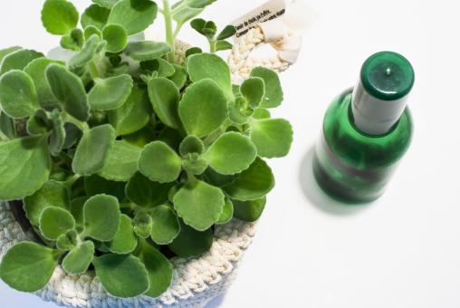 植物 ハーブ アロマ スプレー 美容 肌 ケア 虫よけ ボトル アロマティカス ヘアケア スキンケア オーガニック ボディケア 網かご