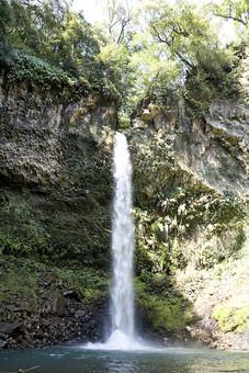 自然 風景 景色 屋外 野外 快晴 晴天 晴れ 植物 緑 水 水しぶき 飛沫 癒し 流れ 落ちる 滝 瀧 水面 落水 飛泉 池 川 勢い 流水