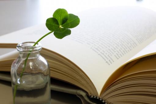 本 四つ葉のクローバー クローバー 光 朝の読書 朝日 植物 葉 四葉 四つ葉 ライフスタイル 読む シロツメクサ 四葉のクローバー 幸運 幸せ 日の出 リラックス 朝 屋内 読書