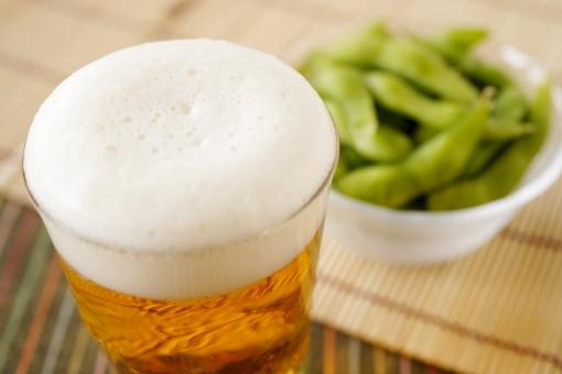 懇親会・ビールで乾杯