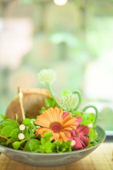 自然 植物 葉 葉っぱ 緑 花 花びら つぼみ オレンジ色 橙色 赤色 飾る ディスプレイ フラワーアレンジメント 皿 器 入れ物 入れる 盛る ぼやける ピンボケ 机 テーブル 無人 アップ 加工 景観 幻想的