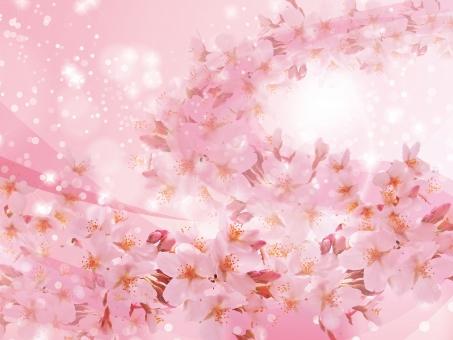 春 ピンク 4月 入学式 入学 卒業式 卒業 お祝い 祝い きらきら 花 花見 輝き サクラ さくら 桜 桜吹雪 花柄 和風 和柄 和 桃色 ピンク 淡い 背景素材 背景 流れ テクスチャ テクスチャー 白