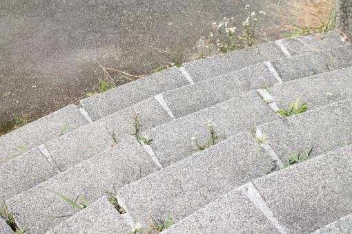 公園 park カーブ 階段 石段 段々 step