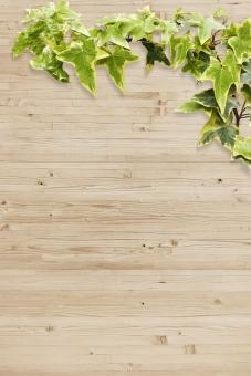 ウッド素材と植物の写真