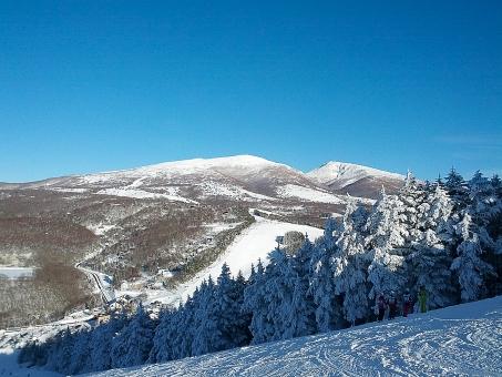 スキー スキー場 冬 雪 景色 風景 屋外 外 雪景色 スポーツ レジャー ゲレンデ スノーボード 自然 降雪 雪山 山 空 青空 森 林