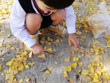落ち葉ひろいビニール袋するこどもの写真