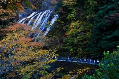 茨城県 袋田の滝 紅葉 吊り橋 三大名瀑