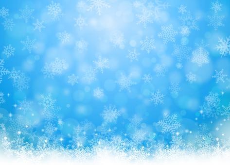 冬1の写真