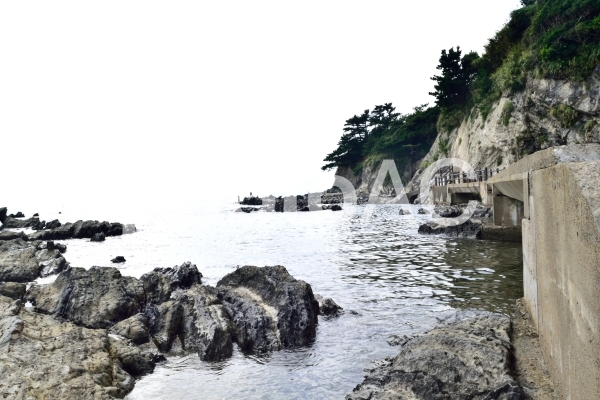 三浦半島 横須賀市荒崎公園 海沿いの遊歩道の写真