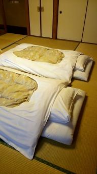 和式 旅館 布団 日本 寝室 畳 ホテル 古式 室内 japanesebed 枕 シーツ マット 中敷