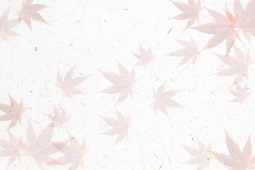 紅葉 もみじ モミジ 背景 テクスチャ 地紋 模様 デザイン 赤 秋 和紙テクスチャ