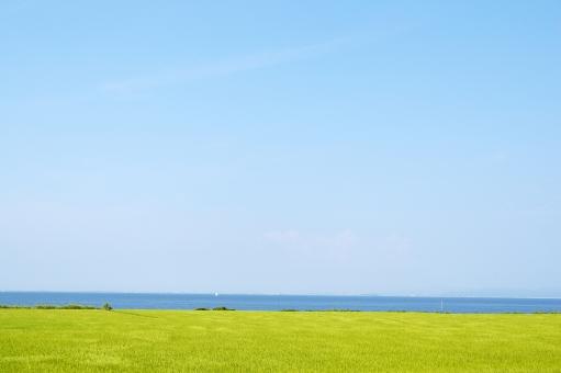 海岸の写真