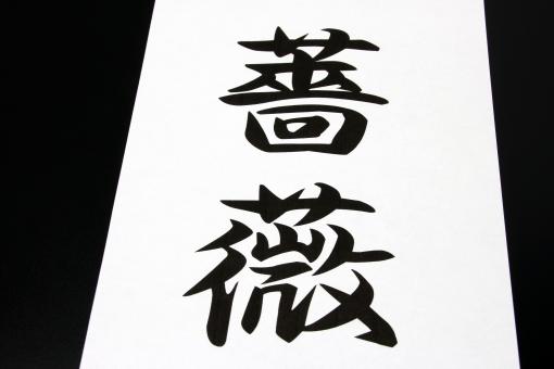 薔薇 ばら バラ 漢字 花 難しい かんじ 言葉 はな ローズ コトバ 画数 トゲ トゲがある とげ 日本 和語 わご にほん JAPAN rosa 香水 花の女王 高嶺の花 バラ園 ガーデニング 観賞 茨の道 棘