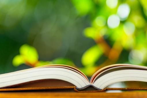 分厚い本と緑背景の写真