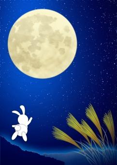 仲秋の名月 中秋の名月 仲秋 中秋 月 うさぎ ウサギ 月夜 満月 月光 十五夜 月見 お月見 月夜 moon full moon お月見 バック バックグラウンド background 背景 背景素材 すすき 薄 芒 ススキ