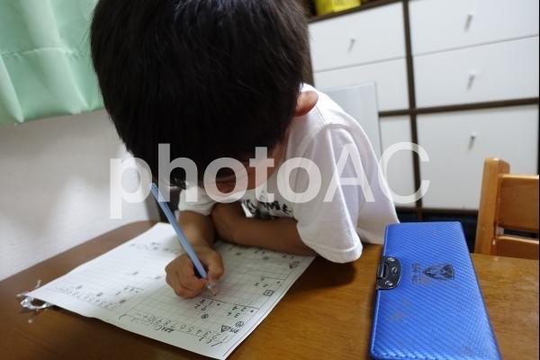 宿題をする小学生の子供の写真