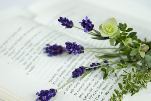 開かれた洋書とハーブの花束_2の写真