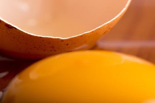 生卵 たまご タマゴ 卵 玉子 エッグ 楕円 卵色 白身 黄身 殻 料理 生き物 食べ物 食材 食料 物撮り 屋内 横から視線 1個 影 生物 鶏 にわとり ニワトリ テーブル 机 割れる アップ ズーム