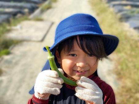 オクラを収穫した男の子_01の写真