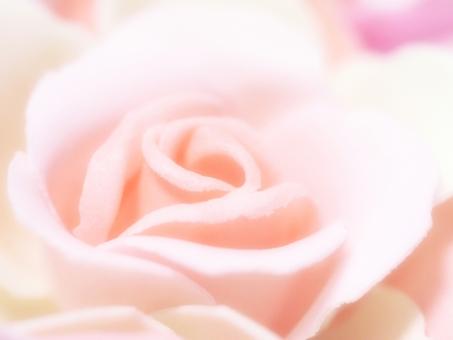 バラ ばら 薔薇 花 石けん せっけん ペーパー 石鹸 バス バスグッズ ピンク ピンク色 ぴんく ぴんく色 やわらかい 柔らかな 柔らかい ふんわり パステル カラー パステルカラー かわいい キュート 女子 背景 バック 壁紙 テクスチャー テクスチャ